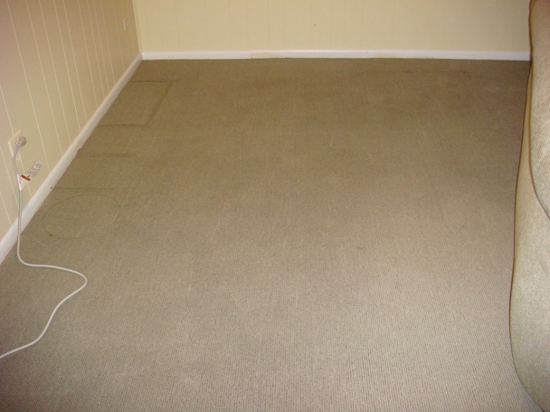 How Can You Remove Mold From Carpet If There Is A Way ...