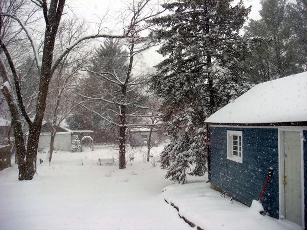 snowyard_2009